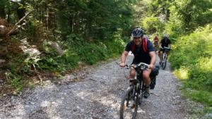 Radfahren Wald